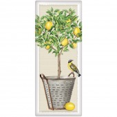 Lemon Tree Bucket Soap Bar- Fresh