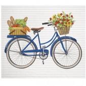 Farmers Market Bike Sponge Cloth