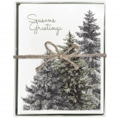 Evergreen Boxed Greeting Card Set