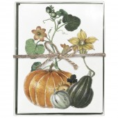 Pumpkin Vine Boxed Greeting Cards