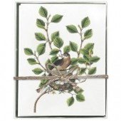 Robins Nest Boxed Greeting Cards