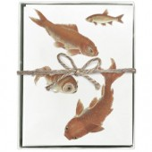 Goldfish Boxed Greeting Cards