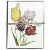 Tulips Boxed Greeting Cards