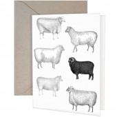 Black Sheep Gift Card