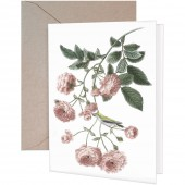 Rambling Rose Greeting Card