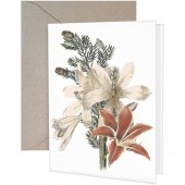 Amaryllis White Greeting Cards