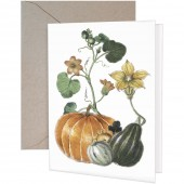 Pumpkin Vine Greeting Card