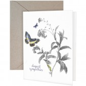 Butterfly & Milkweed Greeting Card