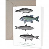 Fish Greeting Card-Birthday
