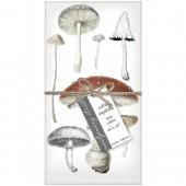 Mushrooms Set of 4 Napkins
