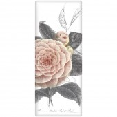 Camellia Soap Bar