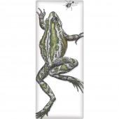 Frog Soap Bar