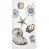Scattered Seashells Towel