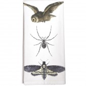 Owl Spider Moth Towel